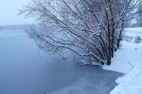 PIX-Winter_Pond_789-0030